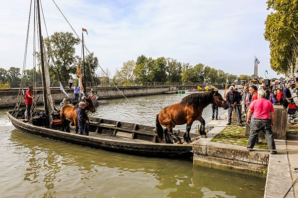 A horse getting off a boat at the Festival de Loire.